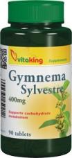 Gymnema Sylvestre 400mg (90)