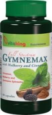 Gymnemax (60)