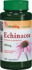 echinacea400