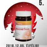vitaking-magnetrio-05-282x300