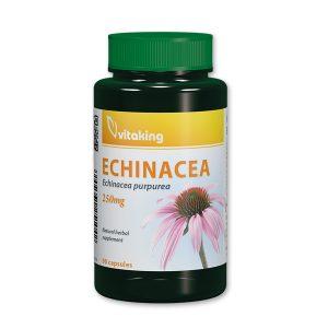 Vitaking_echinacea_90_new-300x300